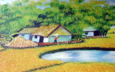 Farm with Irrigation Pond