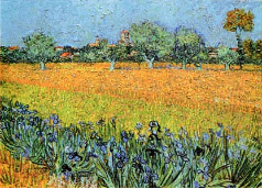 View of Arles with Iris